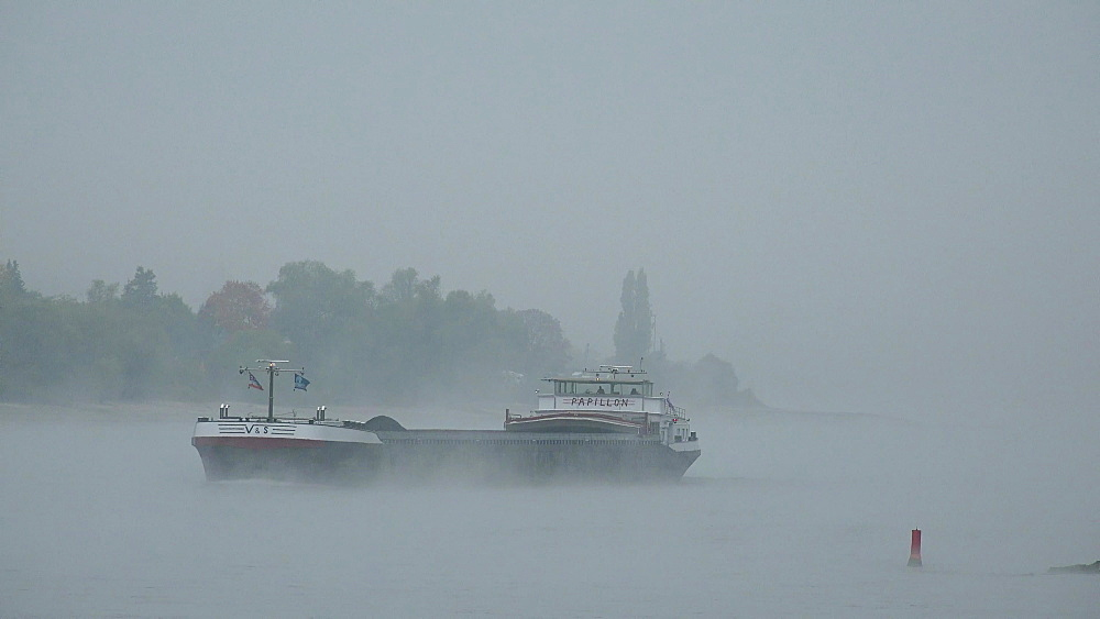 Rhine River near Bacharach, Rhineland-Palatinate, Germany, Europe