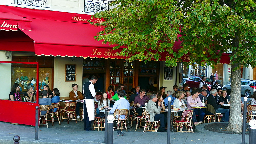 Brasserie de l'Isle Saint-Louis, Quai de Bourbon, Paris, France, Europe - 396-5818