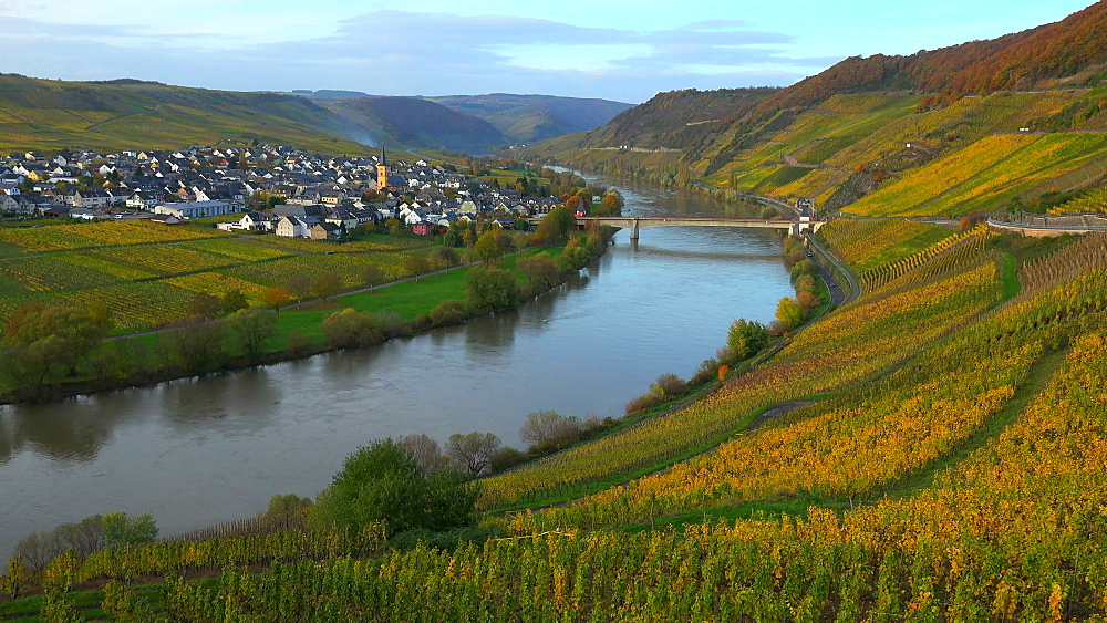 Wine village, Trittenheim, Moselle River, Rhineland-Palatinate, Germany, Europe - 396-6257