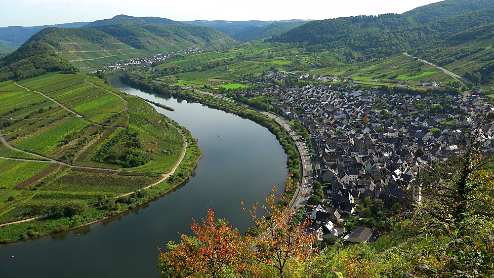 Loop of Moselle River near Bremm, Rhineland-Palatinate, Germany, Europe - 396-6286