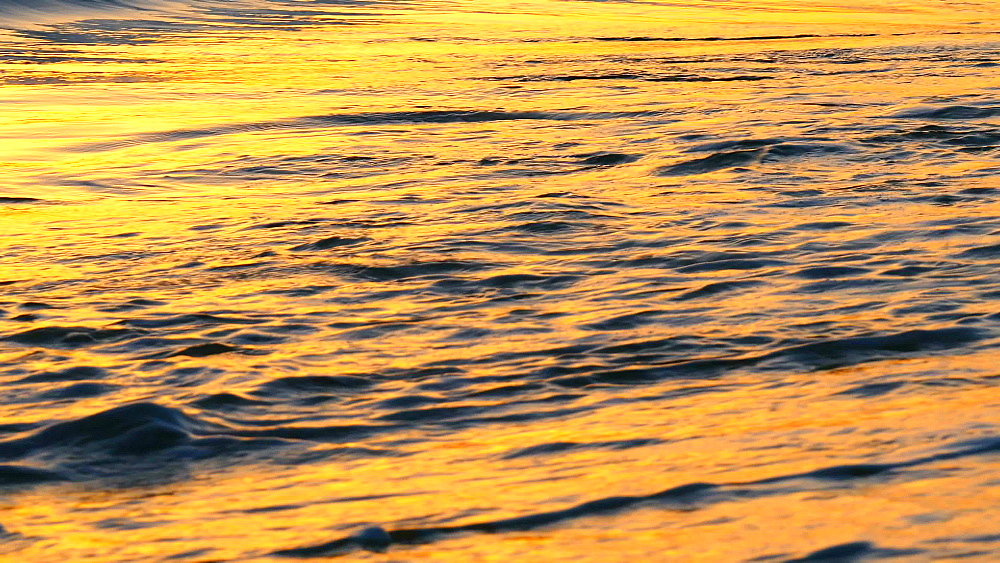 Sea surf in morning light at the beach, Playa Muro, Majorca, Balearic Islands, Spain, Mediterranean, Europe - 396-6374