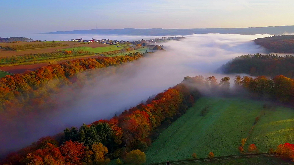 Aerial view of autumnal woodland with fog, Kastel-Staadt, Saar Valley, Rhineland-Palatinate, Germany, Europe - 396-6846