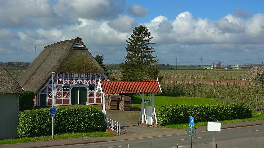 Farmhouse near Hollern-Twielenfleth, Altes Land Region, Lower Saxony, Germany, Europe
