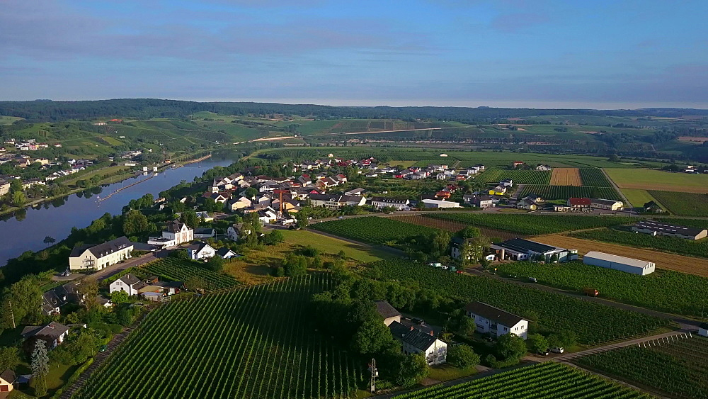 Aerial view of the town of Palzem, Obermosel, Moselle Valley, Rhineland-Palatine, Germany - 396-8526