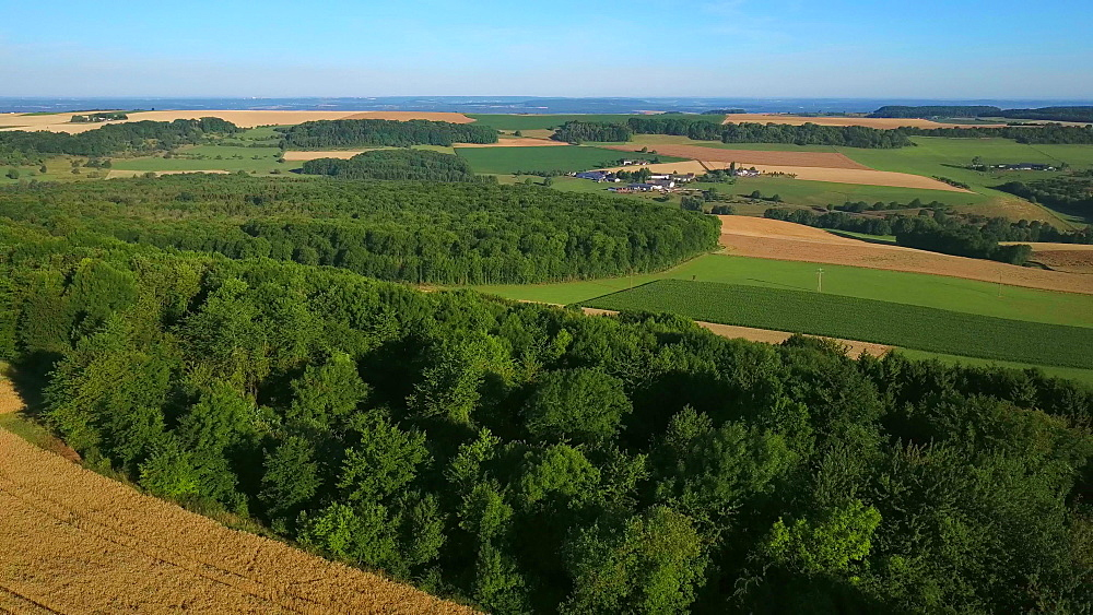 Aerial view of landscape and farms near Fisch, Saargau, Rhineland-Palatinate, Germany, Europe