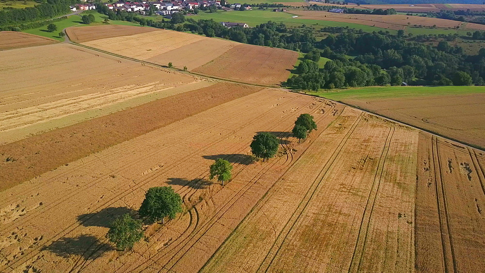 Aerial view of farmland near the town of Meurich, Saargau, Rhineland-Palatinate, Germany