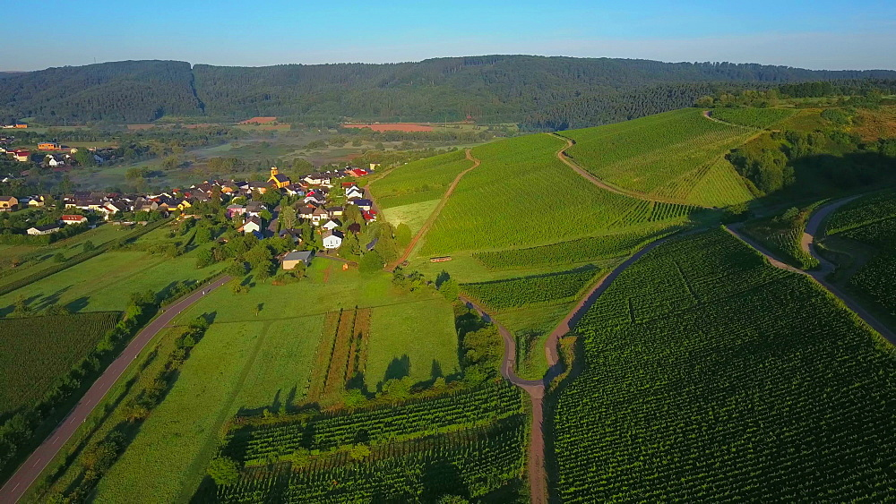 Aerial view of vineyards near the town of Wawern, Saar Valley, Rhineland-Palatinate, Germany - 396-8693