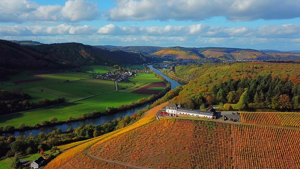 Aerial view of the vineyard estate Saarstein near Serrig, Saar River, Saar Valley near Saarburg, Rhineland-Palatinate, Germany - 396-8819