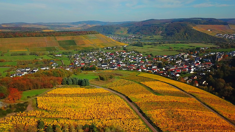 Aerial view of wine-village Ayl in autumn, Saar River, Saar Valley, Rhineland-Palatinate, Germany - 396-8840