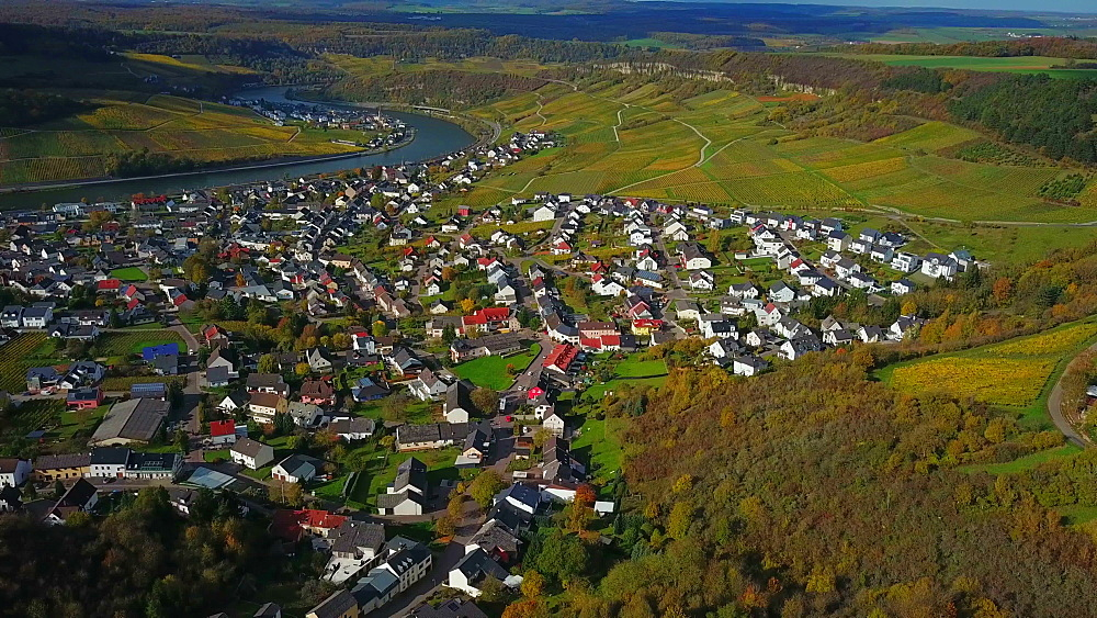 Aerial view of the wine village Nittel, Obermosel, Moselle River, Rhineland-Palatinate, Germany - 396-8876