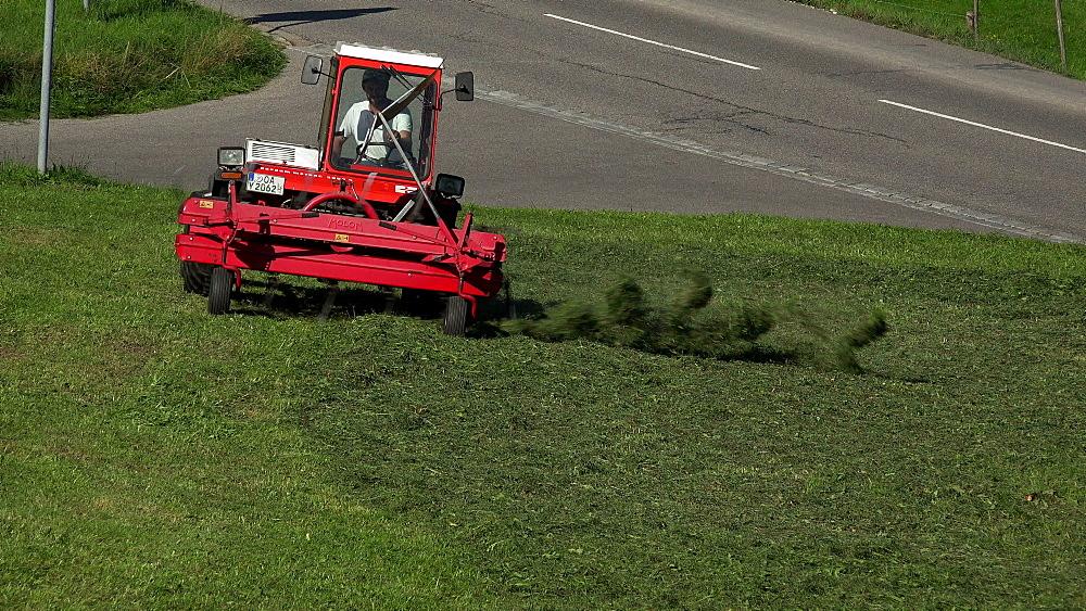 Farmer at haymaking near Oberstdorf, Allg?u, Swabia, Bavaria, Germany