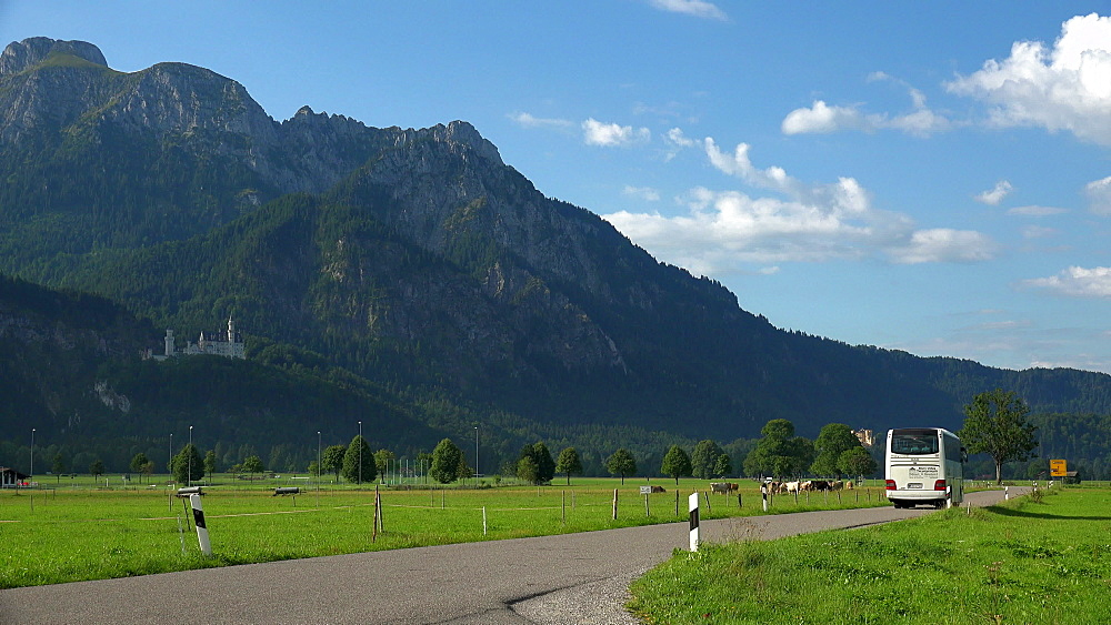 Country road near the Pilgrimage Church St. Coloman, Allgaeu, Swabia, Bavaria, Germany