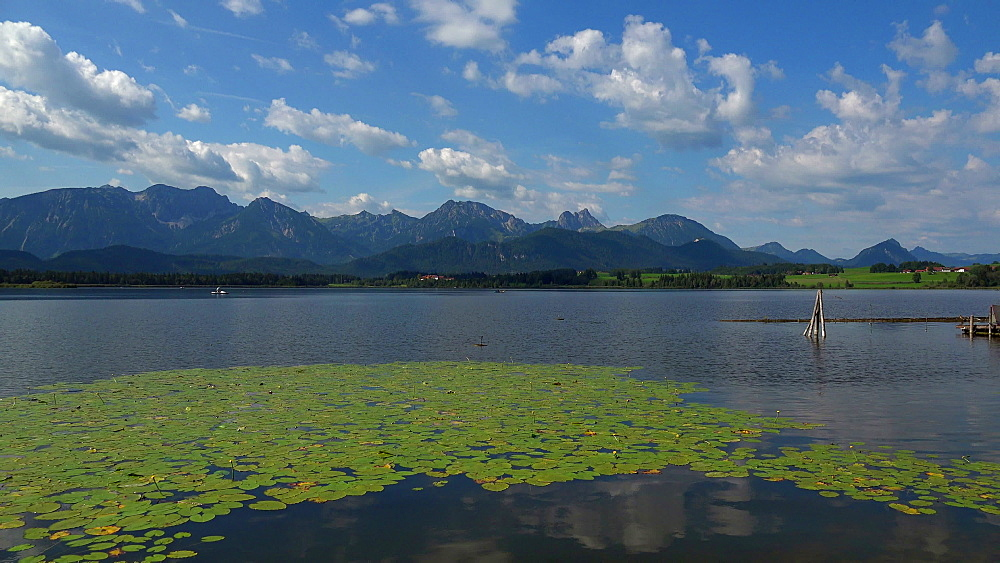 Lake Hopfensee, Hopfen am See near Fuessen, Allgaeu, Swabia, Bavaria, Germany