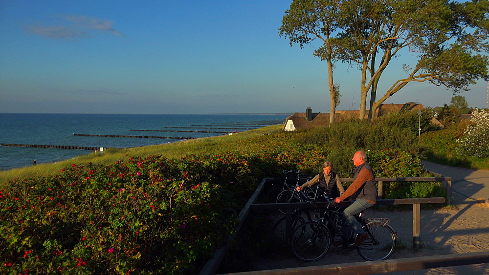 Hohes Ufer at the Baltic Resort of Ahrenshoop, Fischland-Darss-Zingst, Mecklenburg-Western Pomerania, Germany