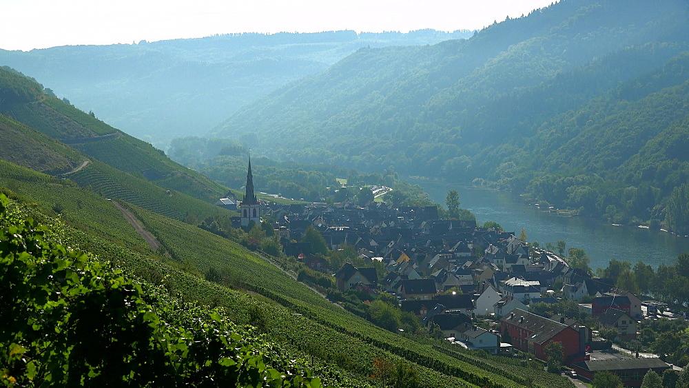 Wine village of Ediger Eller, Moselle Valley, Rhineland-Palatinate, Germany, Europe