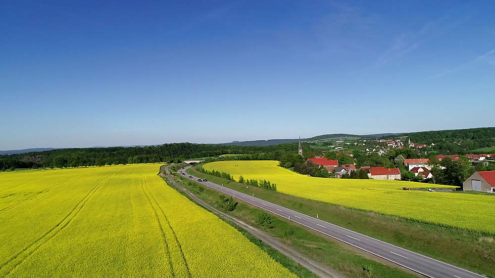 Europe, Germany, Saxony, aerial view of rape seed fields - 733-8089