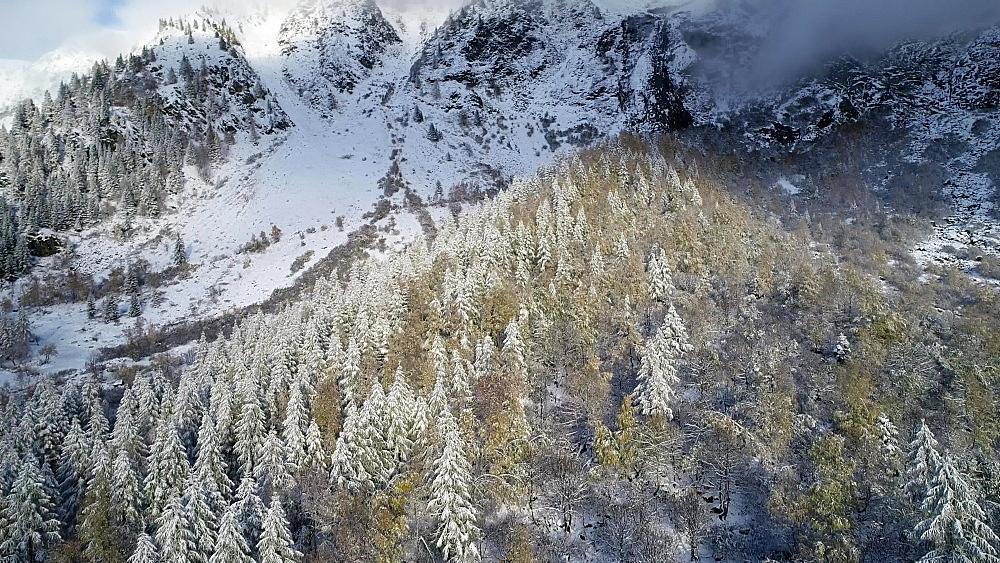 Europe, France, Haute Savoie, Rhone Alps, Chamonix, Le Tour, early season snowfall in autumn - 733-8125