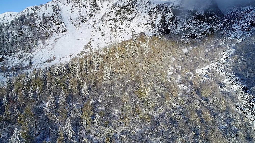 Europe, France, Haute Savoie, Rhone Alps, Chamonix, Le Tour, early season snowfall in autumn - 733-8128
