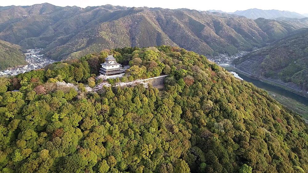 Cherry blossom at Iwakuni Castle, Iwakuni, Yamaguchi Prefecture, Japan, Asia
