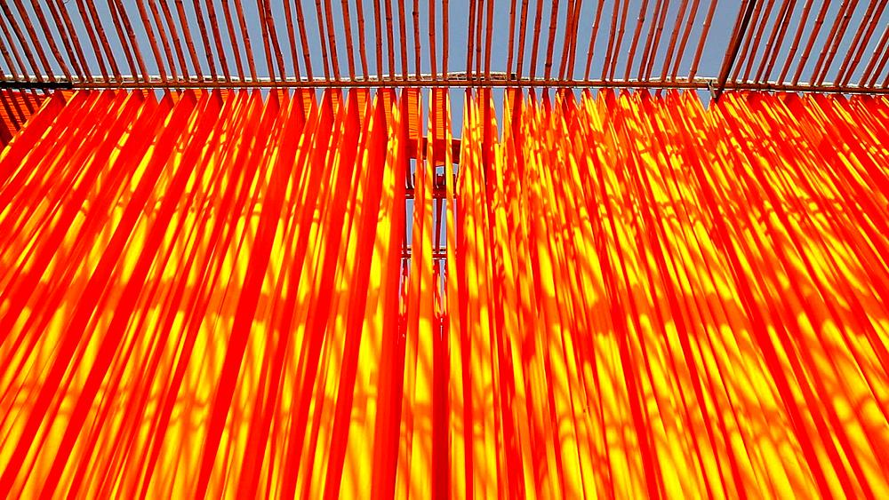 Newly dyed fabric hanging from Bamboo poles to dry, Sari garment factory, Rajasthan, India, Asia