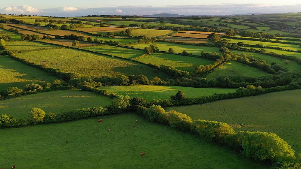 Aerial clip of rolling Devon countryside near Brentor, Devon, England