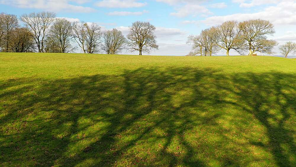 Trees and shadows at Cadbury Castle Iron Age hillfort in Devon, England, United Kingdom, Europe