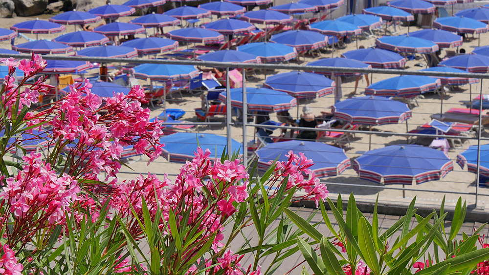 Sunshades on the beach, Sanremo (San Remo), Liguria, Italy, Europe