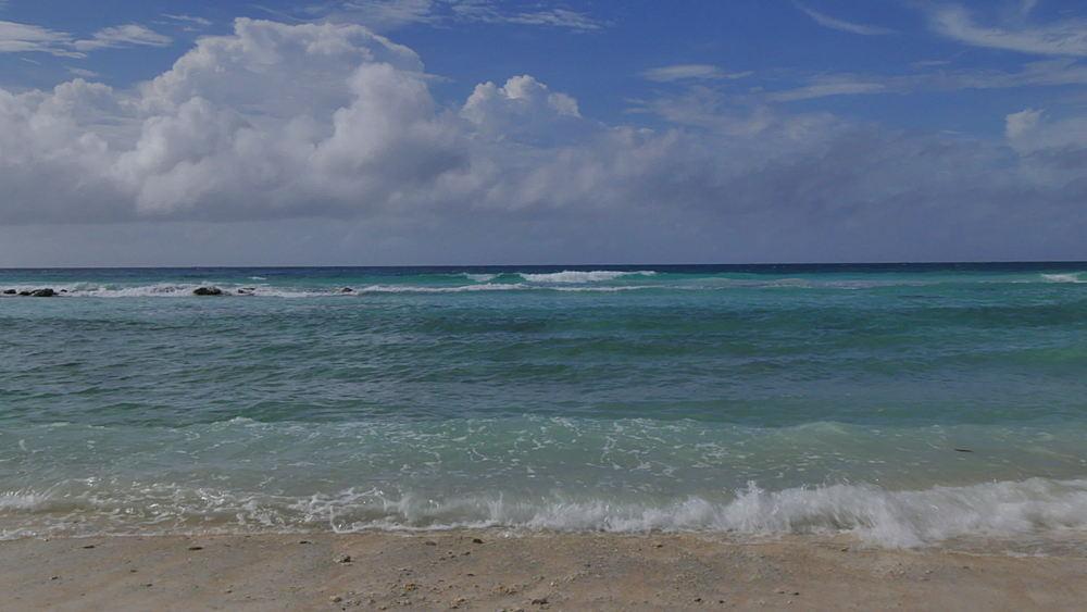 Beach near Speighstown, St Peter, Barbados, West Indies, Caribbean