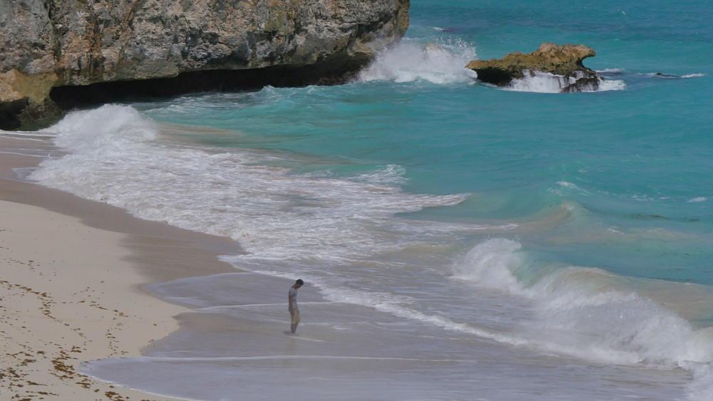 Bottom Bay, St Philip, Barbados, West Indies, Caribbean - 844-10994