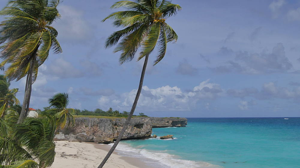 Bottom Bay, St Philip, Barbados, West Indies, Caribbean - 844-10995