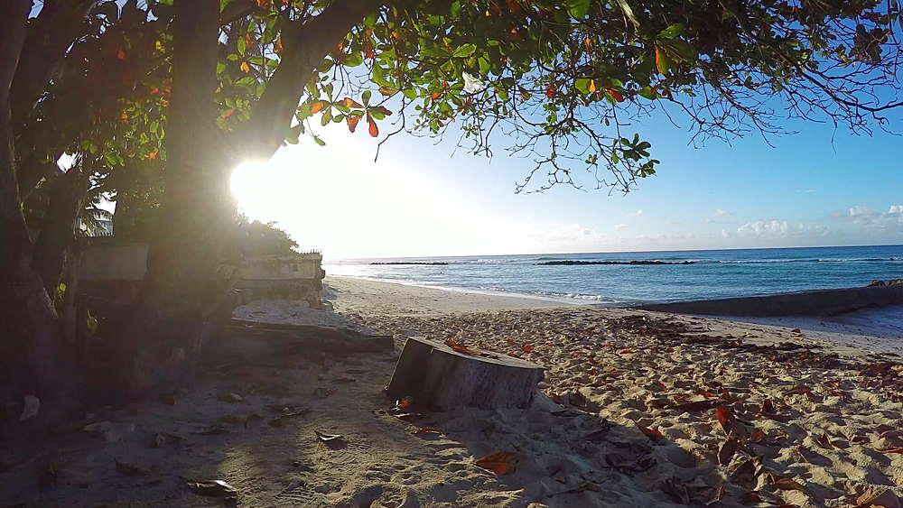 Hastings Beach, Christ Church, Barbados, West Indies, Caribbean - 844-11141