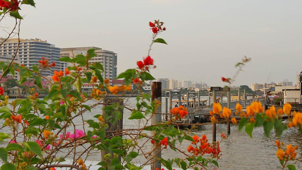 Pier and River Chao Phraya, Bangkok, Thailand, South Asia, Asia
