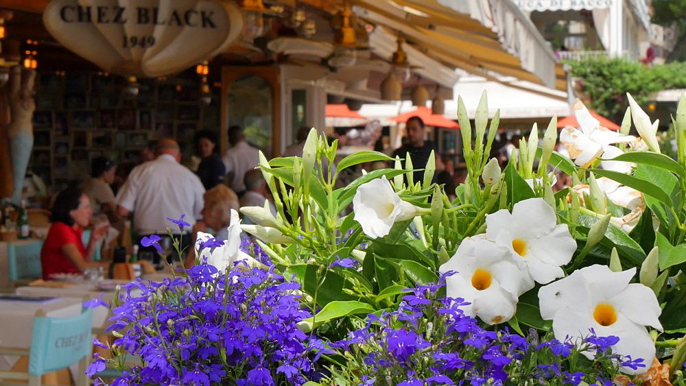 Restaurants in the Harbour, Costiera Amalfitana (Amalfi Coast), UNESCO World Heritage Site, Province of Salerno, Campania, Italy, Europe