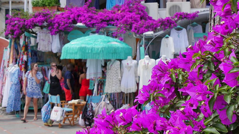 Seafront shops and flowers, Costiera Amalfitana (Amalfi Coast), UNESCO World Heritage Site, Province of Salerno, Campania, Italy, Europe