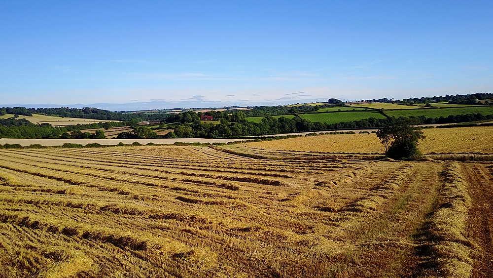View of farmland leading to Hardwick Hall, Chesterfield, Derbyshire, England, United Kingdom, Europe