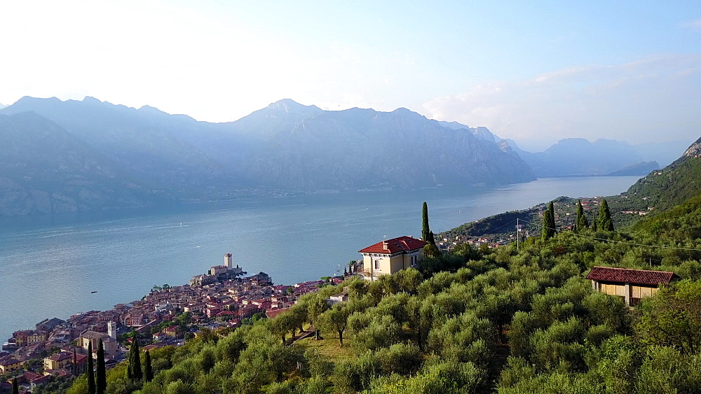 Aerial view of Malcesine and Lake Garda, Veneto, Italian Lakes, Italy, Europe - 844-14954