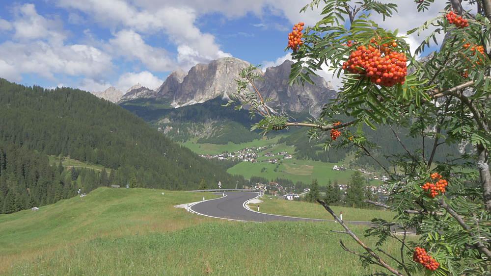 Cyclists on road between Corvara and Arabba, Alta Badia, Province of Belluno, Italian Dolomites, Italy, Europe - 844-15987