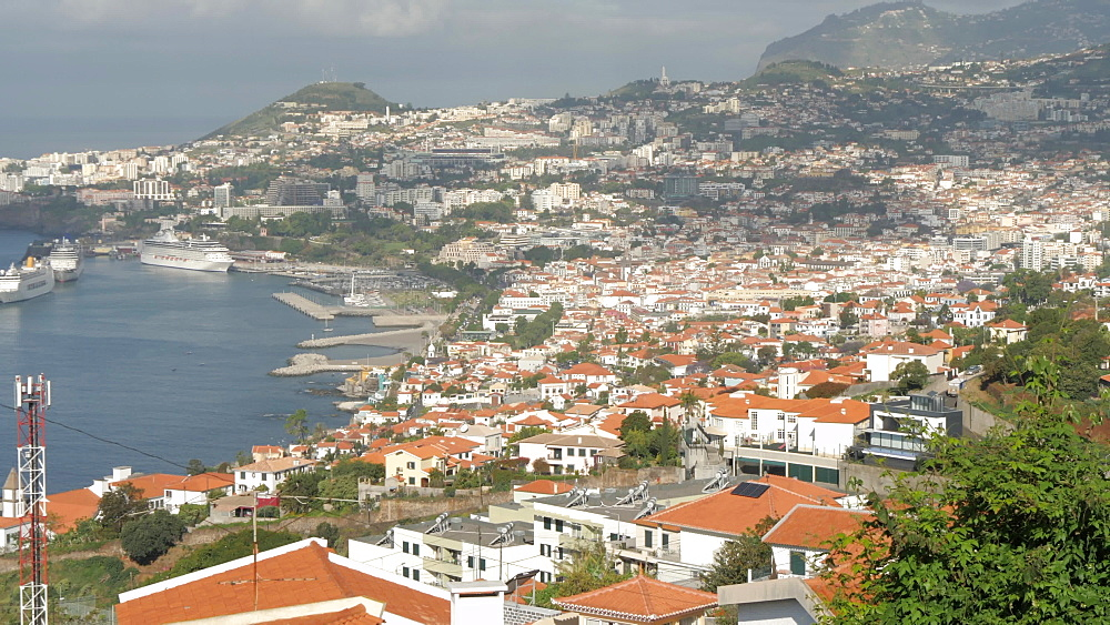 Panoramic view of Funchal and harbour during early morning from above, Funchal, Madeira, Portugal, Atlantic, Europe