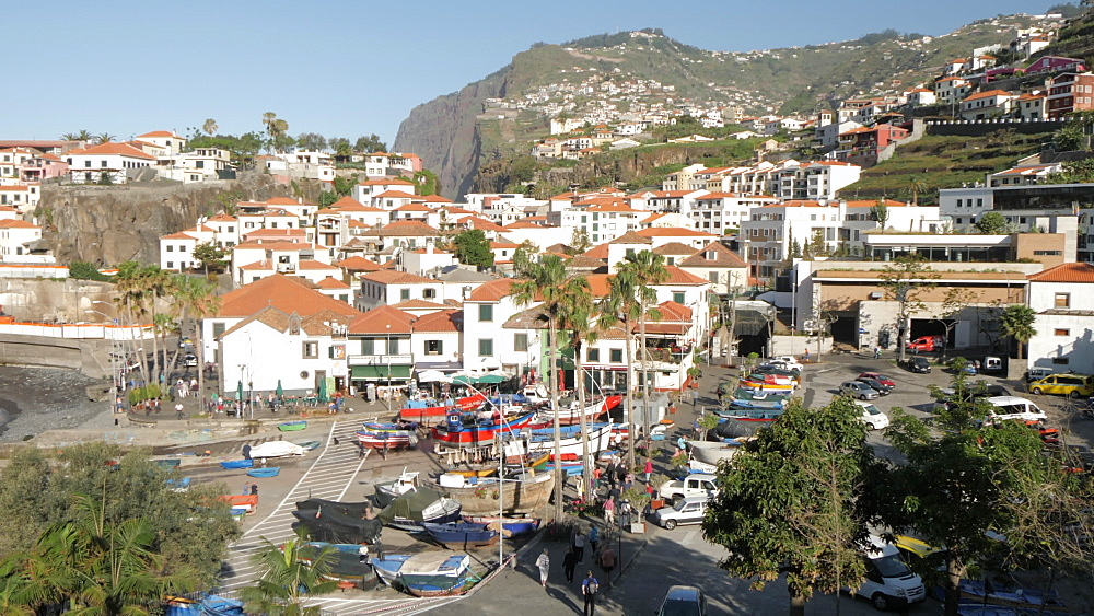 Pan shot from tumbling hillside to harbour, Camara de Lobos, Madeira, Portugal, Atlantic, Europe