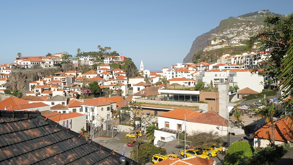 Tilt and panning shot from palm trees to rooftops and church, Camara de Lobos, Madeira, Portugal, Atlantic, Europe
