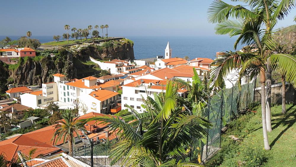 Panning shot through palm trees to rooftops and church, Camara de Lobos, Madeira, Portugal, Atlantic, Europe