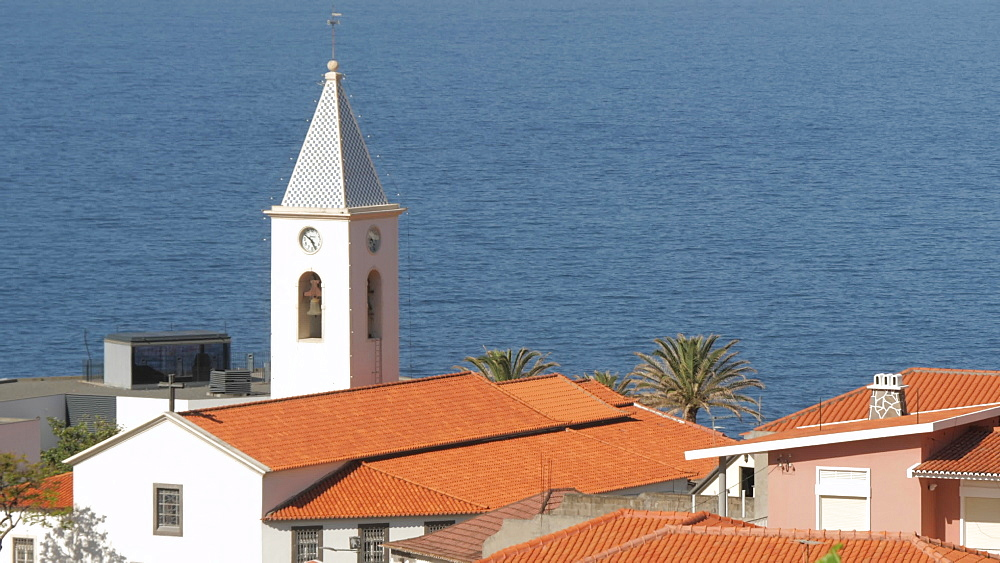 Panning shot from palm trees to rooftops and church, Camara de Lobos, Madeira, Portugal, Atlantic, Europe