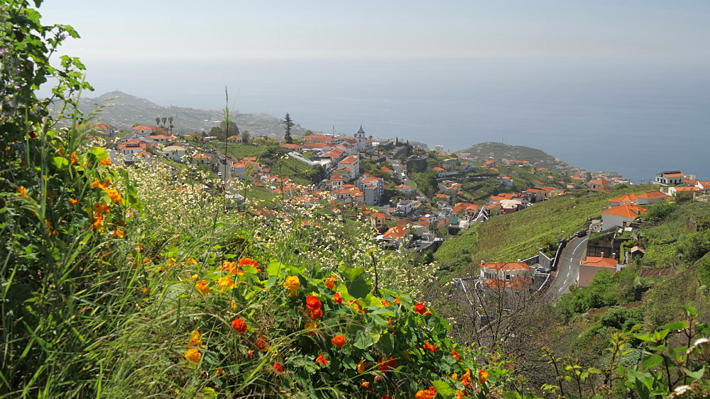 Countryside and village near Cabo Girao, Atlantic Ocean visible in background, Madeira, Portugal, Atlantic, Europe
