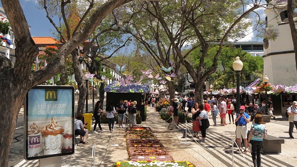 Flower festival and Al Fresco restaurants on Avenue Arriaga, Funchal, Madeira, Portugal, Atlantic, Europe