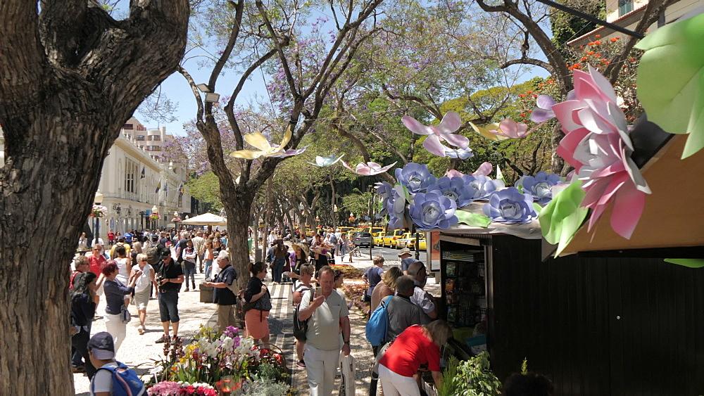 Flower festival stalls on Avenue Arriaga, Funchal, Madeira, Portugal, Atlantic, Europe