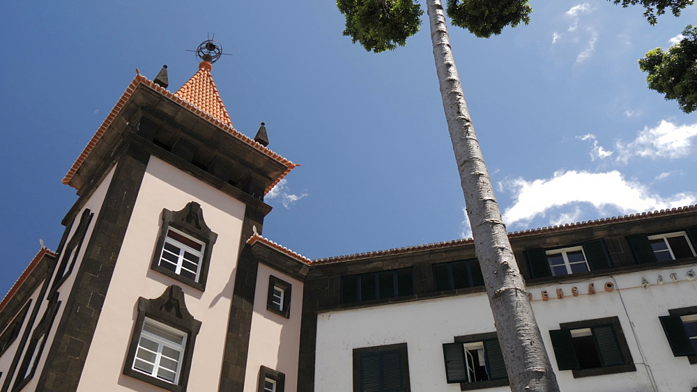 Panning shot from trees to architecture on Avenue Arriaga, Funchal, Madeira, Portugal, Europe - 844-16528