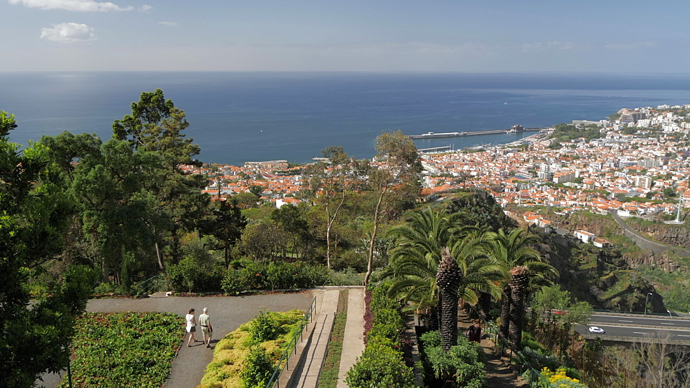 View from Botanical Gardens with Old Town visible in background, Funchal, Madeira, Portugal, Atlantic, Europe