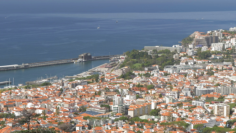 View of Old Town and harbour from Botanical Gardens, Funchal, Madeira, Portugal, Atlantic, Europe