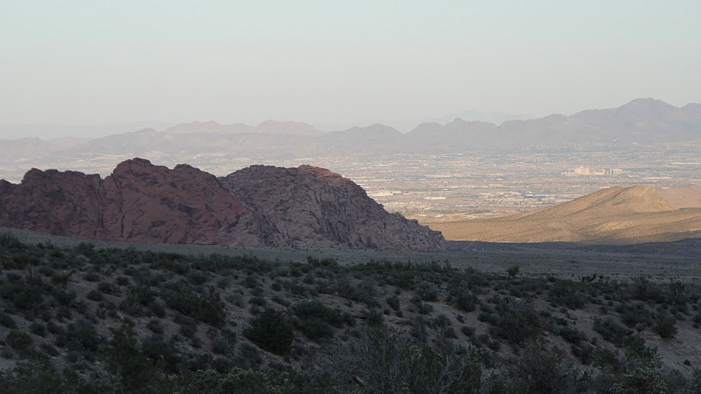 View of flora and mountains in Red Rock Canyon National Conservation Area at dusk, Nevada, United States of America, North America