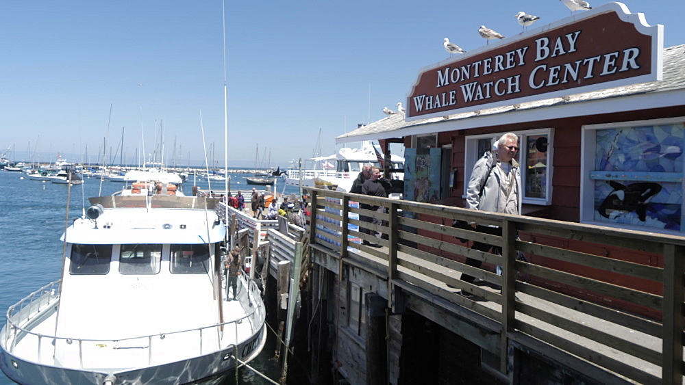People and shops on Old Fisherman's Wharf and Whale Watching boat, Monterey Peninsula, California, United States of America, North America